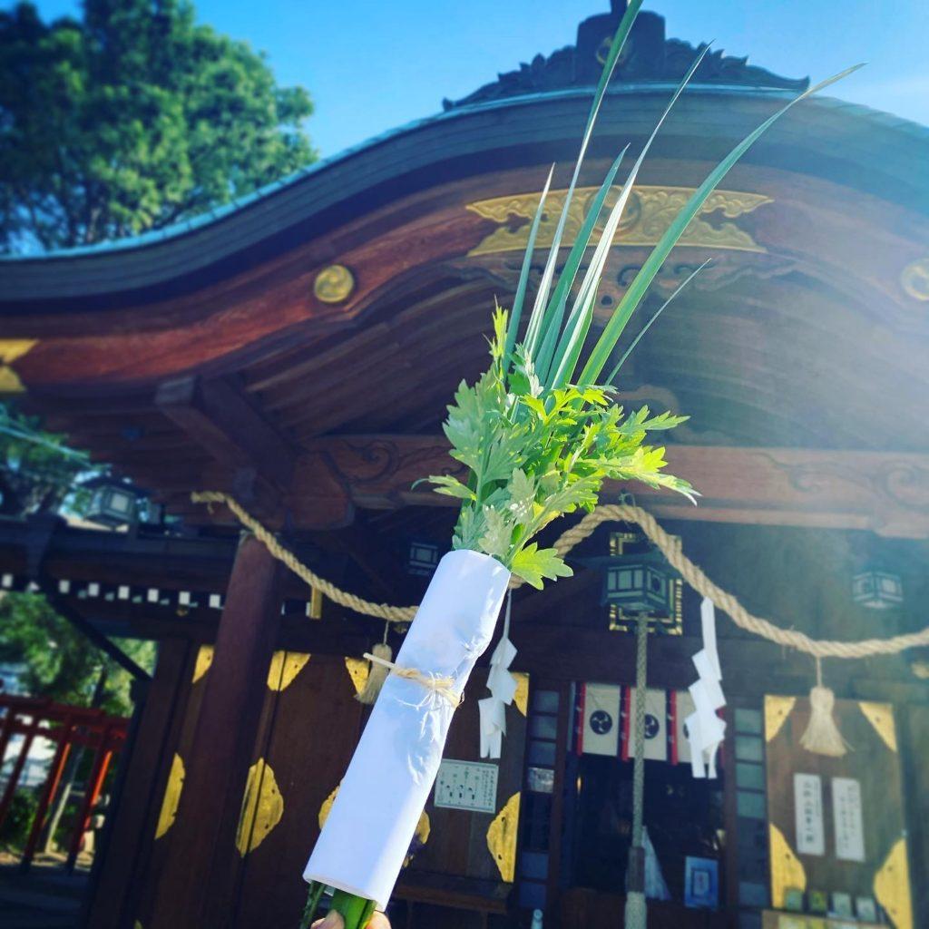 早稲田神社の軒菖蒲